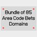Bundle of 85 Area Code Bets Domains